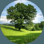 Diritto Ambiente servizi Pubblici Servizi rete infrastruttural